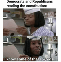 Memes, Constitution, and 🤖: Democrats  and  Republicans  reading the constitution:  l know some of these words (LD)