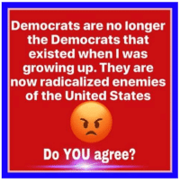 Growing Up, Memes, and United: Democrats are no longer  the Democrats that  existed when I was  growing up. They are  now radicalized enemies  of the United States  Do YOU agree? Agree or disagree?