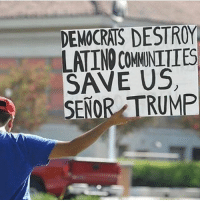 America, Memes, and Savage: DEMOCRATS DESTROY  LATINO COMMNITIES  SAVE US  SENOR TRUMP Making America great again for all Americans!🇺🇸 liberal maga conservative constitution like follow presidenttrump resist stupidliberals merica america stupiddemocrats donaldtrump trump2016 patriot trump yeeyee presidentdonaldtrump draintheswamp makeamericagreatagain trumptrain triggered Partners --------------------- @too_savage_for_democrats🐍 @raised_right_🐘 @conservativemovement🎯 @millennial_republicans🇺🇸 @conservative.nation1776😎 @floridaconservatives🌴