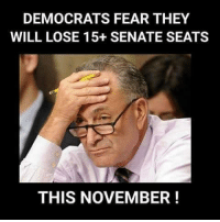 Memes, Fear, and 🤖: DEMOCRATS FEAR THEY  WILL LOSE 15+ SENATE SEATS  THIS NOVEMBER!