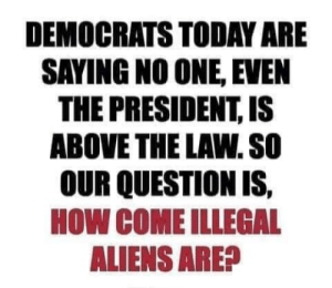 Aliens, Today, and Above the Law: DEMOCRATS TODAY ARE  SAYING NO ONE, EVEN  THE PRESIDENT, IS  ABOVE THE LAW. SO  OUR QUESTION IS,  HOW COME ILLEGAL  ALIENS ARE? A: this is implying that the president is above the law and B: it is law that undocumented immigrants are allowed to seek asylum in the US if they get into the country.