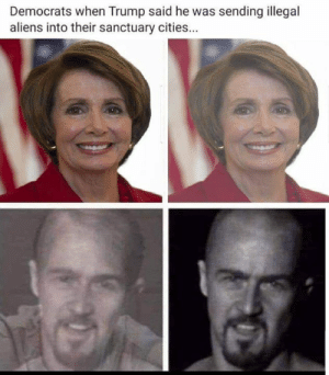 Too true!: Democrats when Trump said he was sending illegal  aliens into their sanctuary cities Too true!