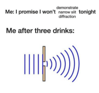 Irl, Me IRL, and Three: demonstrate  Me: I promise I won't narrow slit tonight  diffraction  Me after three drinks: me irl