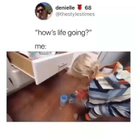 "Life, Memes, and Omg: denielle 68  @thestylestimes  ""how's life going?""  me: omg it just keeps getting worse 😂 (@thestylestimes on Twitter)"