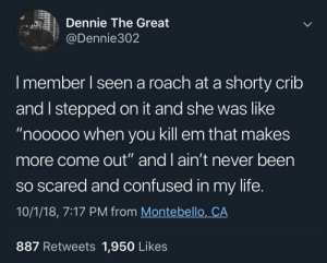 """Confused, Life, and Never: Dennie The Great  @Dennie302  I member I seen a roach at a shorty crilb  and I stepped on it and she was like  """"nooooo when you kill em that makes  more come out"""" and 