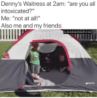 "Denny's, Friends, and Girl Memes: Denny's Waitress at 2am: ""are you all  intoxicated?""  Me: ""not at all!""  Also me and my friends:  IG @HOEGIVESNOFUCKS Mind your own, Brenda!"