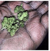 Ass, Booty, and CoCo: Dent Nigga got the underground railroad sketched into his palms. Those probably the saddest nugs of weed I've ever seen. Chalk zone ain't even this ashy. I wouldn't want to fight him. If this nigga clap his hands he'all fuck around and turn into a Fire bender. Bitches love getting booty rubs till it feel like a rusty pipe scrapping against they ass. Hands so rough he might need to crack open a cold one with the boys. Ima open a go fund me so we can over night him some coco butter asap.