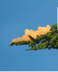 Cloud, The Cloud, and Branch: Deploying a branch to the cloud
