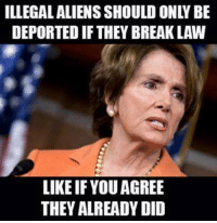 Memes, 🤖, and Twit: DEPORTED IF THEY BREAKLAW  LIKEIF YOUAGREE  THEY ALREADY DID Crossing the border illegally is a crime you twit!