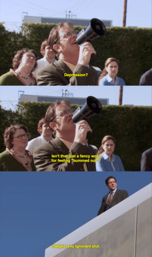 "Ignorant, Depression, and Fancy: Depression?   Isn't that just a fancy word  for feeling ""bummed out""?   Dwight, you ignorant slut."