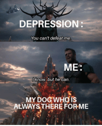 Bad, Dogs, and Depression: DEPRESSION:  You can't defeat me  ME:  Iknow, but he can  MY DOG WHO IS  ALWAYS THERE FORME Dogs pulls you through the bad times.