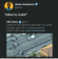 """Abc, Fire, and Memes: deray mckesson  @deray  """"killed by bullet""""  ABC News @ABC  California teen killed by bullet after LA County  deputies open fire on charging pit bull,  sheriff's office says. abcn.ws/2sHcLDA i thought 'people kill people' 🤔🤔🤔"""