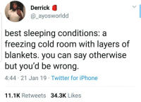 Blackpeopletwitter, Iphone, and Twitter: Derrick  @_ayosworldd  best sleeping conditions: a  freezing cold room with layers of  blankets. you can say otherwise  but you'd be wrong.  4:44 21 Jan 19 Twitter for iPhone  11.1K Retweets 34.3K Likes dont forget having the fan on (via /r/BlackPeopleTwitter)