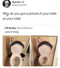 Cute, Memes, and A Picture: Derrick  @ayosworldd  Why do you got a picture of your toilet  on your toilet  Cill Bosby @theCillBosby  cute lil thing 🤣WTH