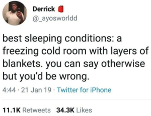 Dank, Iphone, and Twitter: Derrick O  @_ayosworldd  best sleeping conditions: a  freezing cold room with layers of  blankets. you can say otherwise  but you'd be wrong.  4:44 21 Jan 19 Twitter for iPhone  11.1K Retweets 34.3K Likes
