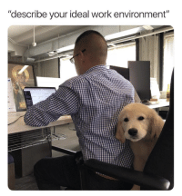 """Work, Answer, and Easy: """"describe your ideal work environment""""  10 This question is so easy to answer"""