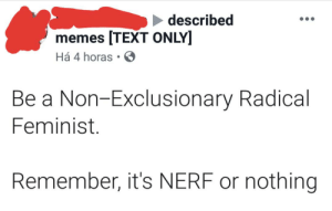 Memes, Text, and Nerf: described  memes TEXT ONLY]  Há 4 horas  Be a Non-Exclusionary Radical  Feminist.  Remember, it's NERF or nothing [TEXT ONLY]