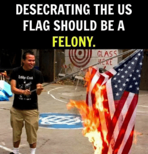Memes, 🤖, and Glass: DESECRATING THE US  FLAG SHOULD BE A  FELONY  GLASS