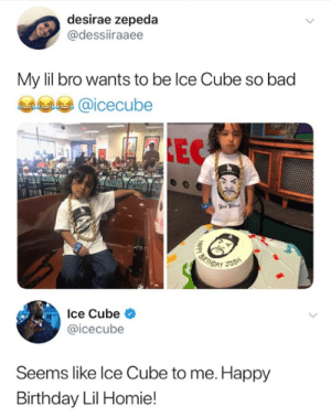 Wholesome Ice Cube: desirae zepeda  @dessiiraaee  My lil bro wants to be lce Cube so bad  @icecube  Ice Cube <  @icecube  Seems like lce Cube to me. Happy  Birthday Lil Homie! Wholesome Ice Cube