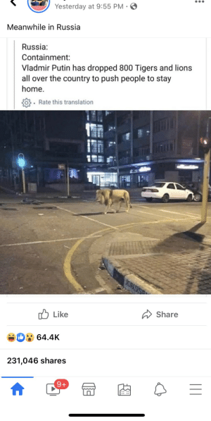 Desperate times means spreading of misinformation. Post claims Russia using tigers and lions to force people to stay at home. And sadly thousands believe this.: Desperate times means spreading of misinformation. Post claims Russia using tigers and lions to force people to stay at home. And sadly thousands believe this.