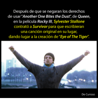 "Another One, Another One, and Memes: Después de que se negaran los derechos  de usar ""Another One Bites the Dust, de Queen,  en la pelicula Rocky Ill, Sylvester Stallone  contrato a Survivor para que escribieran  una cancion original en su lugar  dando lugar a la creacion de ""Eye of The Tiger  De Curioso"