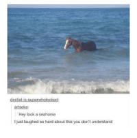 Memes, 🤖, and Seahorse: destiel-is-superwholocked:  artseke:  Hey look a seahorse  I just laughed so hard about this you don't understand A seahorse 🤔😂😂