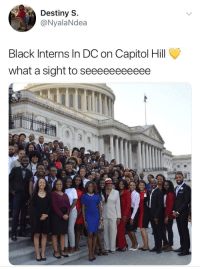 Blackpeopletwitter, Destiny, and Black: Destiny S.  @NyalaNdea  Black Interns In DC on Capitol Hill  what a sight to seeeeeeeeeee <p>Our ancestors built this country, it's only right that we represent ✊🏽 (via /r/BlackPeopleTwitter)</p>