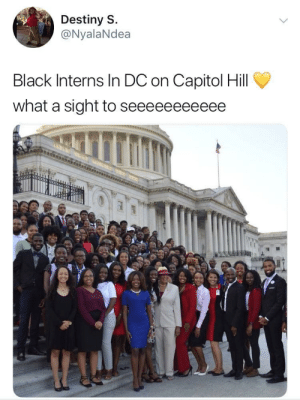 Destiny, Black, and What: Destiny S.  @NyalaNdea  Black Interns In DC on Capitol Hill  what a sight to seeeeeeeeeee Our ancestors built this country, its only right that we represent ✊🏽