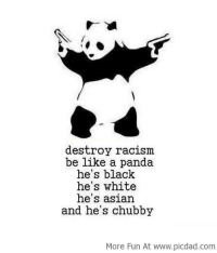Destroy Racism Be Like A Panda: destroy racism  be like a panda  he's black  he's white  he's asian  and he's chubby  More Fun At www.picdad.com