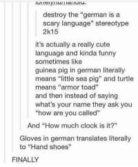 "name some german words n the definition: destroy the ""german is a  scary language"" stereotype  2k15  it's actually a really cute  language and kinda funny  sometimes like  guinea pig in german literally  means ""little sea pig"" and turtle  means ""armor toad""  and then instead of saying  what's your name they ask you  ""how are vou called""  And ""How much clock is it?""  Gloves in german translates literally  to ""Hand shoes""  FINALLY name some german words n the definition"