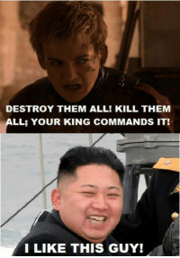 Game of Thrones Memes: DESTROY THEM ALL! KILL THEM  LL: YOUR KING COMMANDS IT!  I LIKE THIS GUY! Game of Thrones Memes