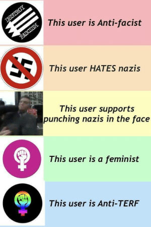 a feminist: DESTROY  This user is Anti-facist  FASCISM  This user HATES nazis  This user supports  punching nazis in the face  This user is a feminist  This user is Anti-TERF