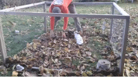 Destroyer and Leaves: destroyer of leaves