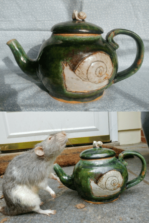 Tumblr, Blog, and Smile: destroyingangelcreations: destroyingangelcreations:  my final project for my first ceramics class (last spring!) was this teapot and I am still really proud of it :^)  all the tags people have left on this really encourage me and make me smile but these are my favorites: