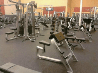RT @GymGoers: An empty gym = Instant happiness: DETERMINATION RT @GymGoers: An empty gym = Instant happiness