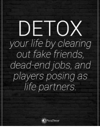 Fake, Friends, and Life: DETOX  your life by clearing  out fake friends,  dead-end jobs, and  players posing as  life partners. Tag someone who needs to read this. DETOX your life by clearing out fake friends, dead-end jobs, and players posing as life partners. powerofpositivity