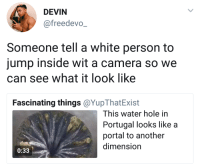Blackpeopletwitter, White People, and Camera: DEVIN  @freedevo  Someone tell a white person to  jump inside wit a camera so we  can see what it look like  Fascinating things @YupThatExist  This water hole in  Portugal looks like a  portal to another  dimension  0:33 <p>That is what white people are good for (via /r/BlackPeopleTwitter)</p>