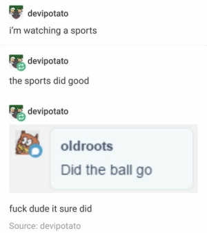 Dude, Funny, and Sports: devipotato  i'm watching a sports  devipotato  the sports did good  devipotato  oldroots  Did the ball go  fuck dude it sure did  Source: devipotato  CO  COn 38 Funny Pictures For Today (#211)