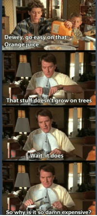 Dewey: Dewey, go easy on that  Orange iuice  That stuff:doesn't grow on trees  Wait, it does  So why is it so damn expensive?