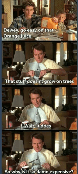 Damn millennials ruining the economy via /r/memes https://ift.tt/2N9FxWd: Dewey, go easy on that  Orange iuice  That stuff:doesn't grow on trees  Wait, it does  So why is it so damn expensive? Damn millennials ruining the economy via /r/memes https://ift.tt/2N9FxWd