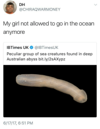 Blackpeopletwitter, Dick, and Girl: DH  @CHIRAQWARMONEY  My girl not allowed to go in the ocean  anymore  IBTimes UK@IBTimesUK  Peculiar group of sea creatures found in deep  Australian abyss bit.ly/2sAXypz  6/17/17, 6:51 PM <p>That deep sea dick bout to steal your girl (via /r/BlackPeopleTwitter)</p>