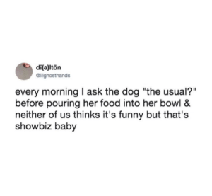 """Food, Funny, and Baby: di(a)lton  @lilghosthands  every morning I ask the dog """"the usual?""""  before pouring her food into her bowl &  neither of us thinks it's funny but that's  showbiz baby me🐶irl"""