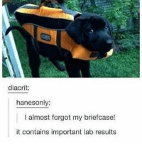 Meme, Memes, and 🤖: diacrit:  hanesonly:  I almost forgot my briefcase!  it contains important lab results low quality photo, high quality meme