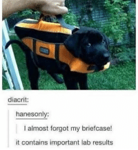 Memes, 🤖, and Nap: diacrit:  hanesonly:  I almost forgot my briefcase!  it contains important lab results I need a nap and a hug