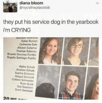 Crying, Memes, and 🤖: diana bloom  @nycstheplacetob  they put his service dog in the yearbook  i'm CRYING  vMaaison nowiette  Dylan Runion  Catherine Sale  Allyson Salierno  Thomas Salierno  Ricardo Sanchez Portillo  Rogelio Santiago Padilla  Alpha Schalk  Andrew Schalk  Sophia Schenck  Abigail Schmidt  Colleen Schneider  Ryan Scott  Gail Seablom  Scott Seestedt 🤣Damn
