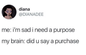 meirl: diana  @DIANADEE  me: i'm sad i need a purpose  my brain: did u say a purchase meirl
