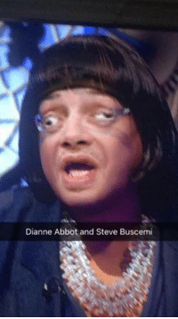 Your newsfeed has just been blessed with a picture of Diane Abbot and Steve Buscemi merged into one.: Dianne Abbot and Steve Buscemi Your newsfeed has just been blessed with a picture of Diane Abbot and Steve Buscemi merged into one.