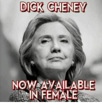 Dick Cheney: DICK CHENEY  NOW AVAILABLE