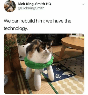 Dank, Memes, and Target: Dick King-Smith HQ  DickKingSmith  We can rebuild him; we have the  technology He came back stronger. And ready for battle. by SonKu3 MORE MEMES
