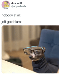 jeff goldblum is judging u: dick wolf  @soyeahnah  nobody at all:  jeff goldblum: jeff goldblum is judging u